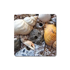 Beach Treasures Magnet (square)