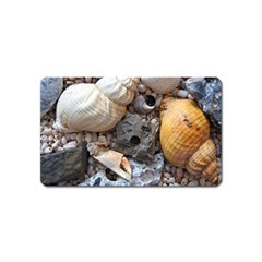 Beach Treasures Magnet (Name Card)