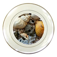 Beach Treasures Porcelain Display Plate