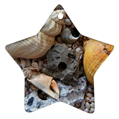 Beach Treasures Star Ornament (Two Sides)