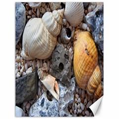 Beach Treasures Canvas 12  x 16  (Unframed)