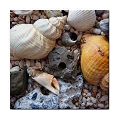Beach Treasures Face Towel