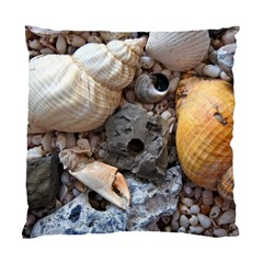 Beach Treasures Cushion Case (two Sided)
