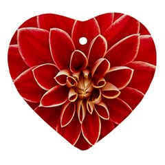 Red Dahila Heart Ornament