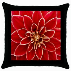 Red Dahila Black Throw Pillow Case