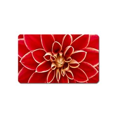 Red Dahila Magnet (name Card)