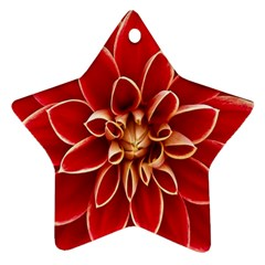 Red Dahila Star Ornament (Two Sides)