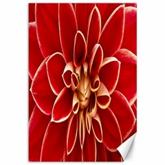 Red Dahila Canvas 12  X 18  (unframed)