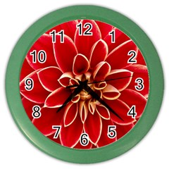 Red Dahila Wall Clock (Color)
