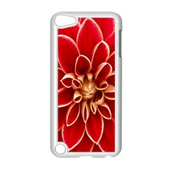 Red Dahila Apple iPod Touch 5 Case (White)