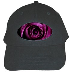 Deep Purple Rose Black Baseball Cap