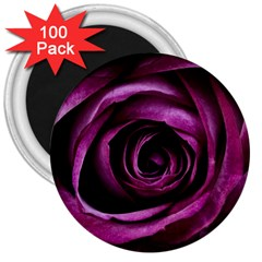 Deep Purple Rose 3  Button Magnet (100 pack)