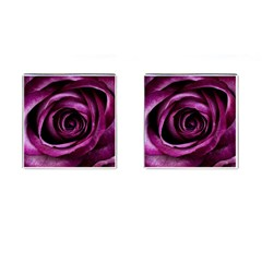 Deep Purple Rose Cufflinks (Square)