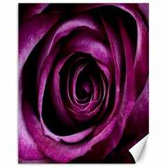Deep Purple Rose Canvas 11  X 14  (unframed)