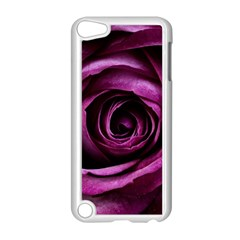 Deep Purple Rose Apple iPod Touch 5 Case (White)