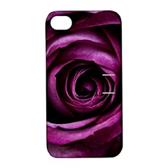 Deep Purple Rose Apple iPhone 4/4S Hardshell Case with Stand
