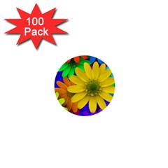 Gerbera Daisies 1  Mini Button (100 Pack)