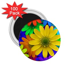 Gerbera Daisies 2.25  Button Magnet (100 pack)
