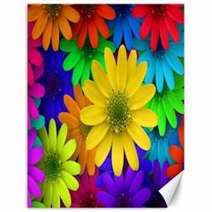 Gerbera Daisies Canvas 18  x 24  (Unframed)