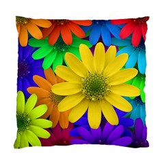Gerbera Daisies Cushion Case (two Sided)