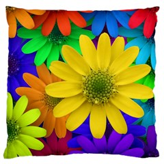 Gerbera Daisies Large Cushion Case (Two Sided)