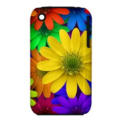 Gerbera Daisies Apple iPhone 3G/3GS Hardshell Case (PC+Silicone)