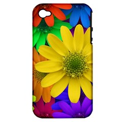 Gerbera Daisies Apple Iphone 4/4s Hardshell Case (pc+silicone)
