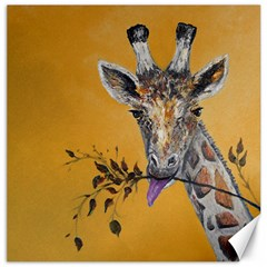 Giraffe Treat Canvas 12  x 12  (Unframed)