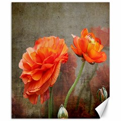 Orange Rose From Bud To Bloom Canvas 8  x 10  (Unframed)