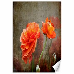 Orange Rose From Bud To Bloom Canvas 12  x 18  (Unframed)