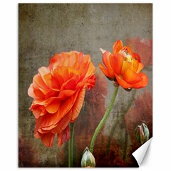 Orange Rose From Bud To Bloom Canvas 16  X 20  (unframed)