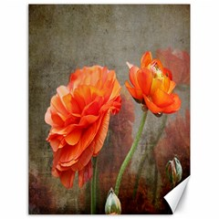 Orange Rose From Bud To Bloom Canvas 18  X 24  (unframed)