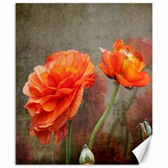 Orange Rose From Bud To Bloom Canvas 20  X 24  (unframed)