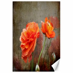 Orange Rose From Bud To Bloom Canvas 20  x 30  (Unframed)