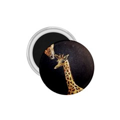 Baby Giraffe And Mom Under The Moon 1.75  Button Magnet
