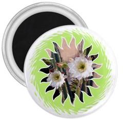 20131123 3 3  Button Magnet
