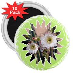 20131123 3 3  Button Magnet (10 pack)
