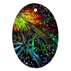 Exploding Fireworks Oval Ornament
