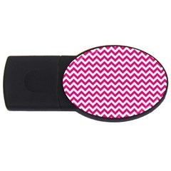 Hot Pink And White Zigzag 2GB USB Flash Drive (Oval)