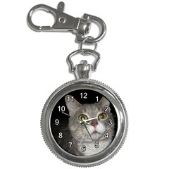 P9190174 Key Chain Watch