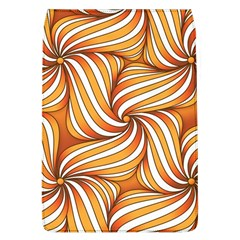 Sunny Organic Pinwheel Removable Flap Cover (large)