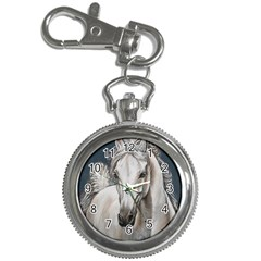 Breeze Key Chain Watch