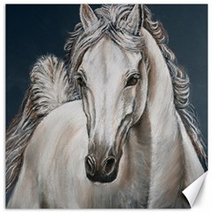 Breeze Canvas 20  X 20  (unframed)