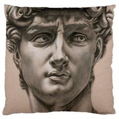 David Large Cushion Case (Single Sided)