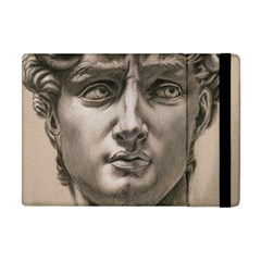 David Apple Ipad Mini Flip Case