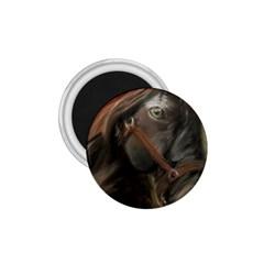 Storm 1.75  Button Magnet