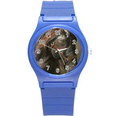 Storm Plastic Sport Watch (small)