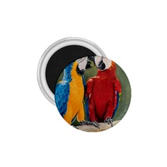 Feathered Friends 1.75  Button Magnet