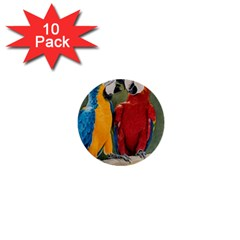 Feathered Friends 1  Mini Button (10 pack)