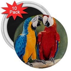 Feathered Friends 3  Button Magnet (10 pack)